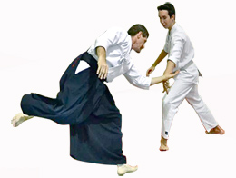 Aikido_fight